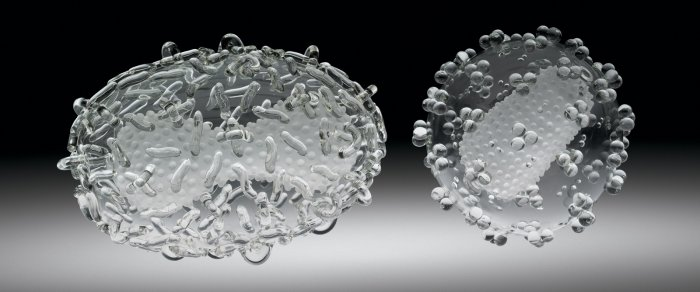 Smallpox Virus and HIV - Luke Jerram